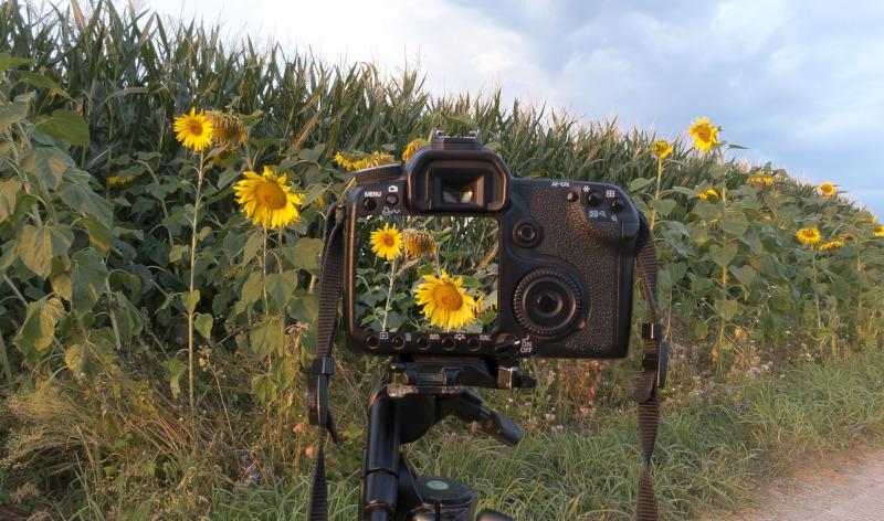 Rzeszowscy pasjonaci fotografii działają wspólnie