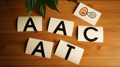 AAC, czyli komunikacja wspomagająca i alternatywna dla osób niepełnosprawnych