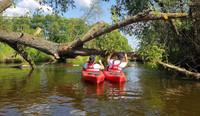 Dbają o czystość i atrakcyjność turystyczną rzeki Wkry