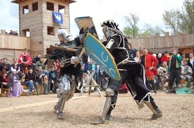 Rycerze z Opola