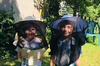 """""""Pszczoła"""" - łąki kwietne, edukacja i projekt Pasieki i Ogrodu Społecznego"""