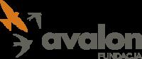 Licytuj i helpuj na Allegro, czyli charytatywne aukcje Fundacji Avalon