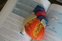 Wiedza, która ratuje życie! - Fundacja Verita